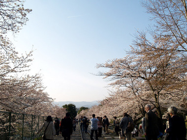 インクラインから見る京都市街