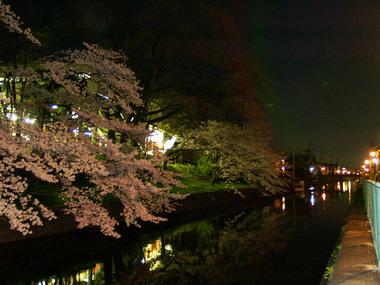 琵琶湖疏水(伏見)